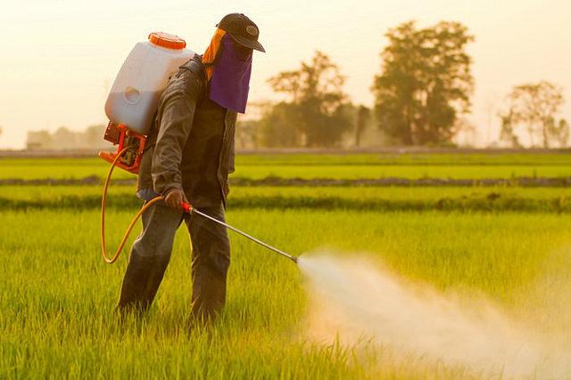 EEUU: El 75% de las muestras de aire y lluvia contienen pesticidas de Monsanto