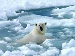 Diversos organismos destacan en un informe las crecientes señales y consecuencias del cambio climático en la atmósfera, la tierra y los océanos