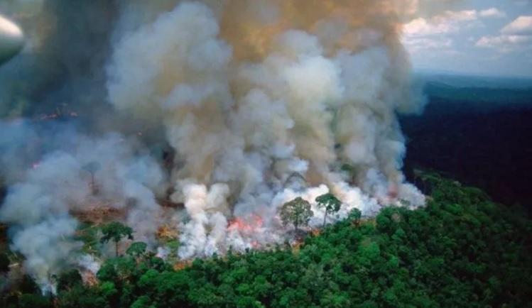 La Amazonía está bajo fuego, no sólo a merced de las llamas
