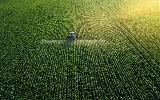 El programa de la CMNUCC de junio revisa la acción sobre la agricultura y el cambio climático