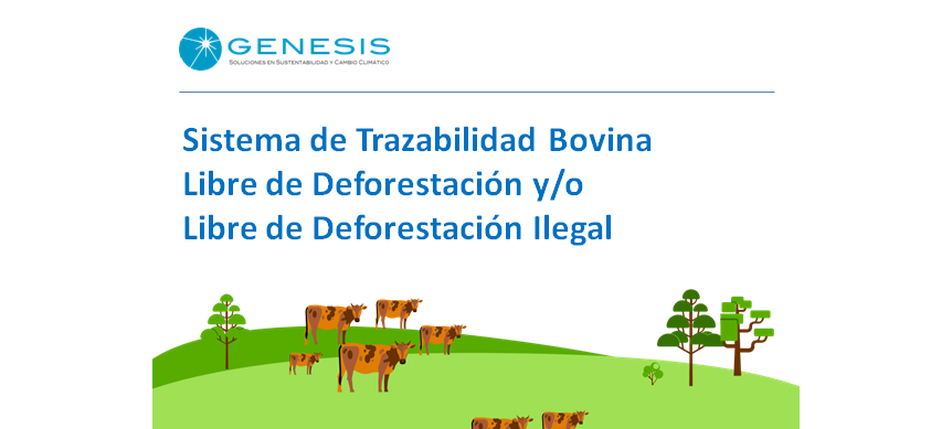 Bovine meat in Argentina Free of ilegal and/or legal deforestation